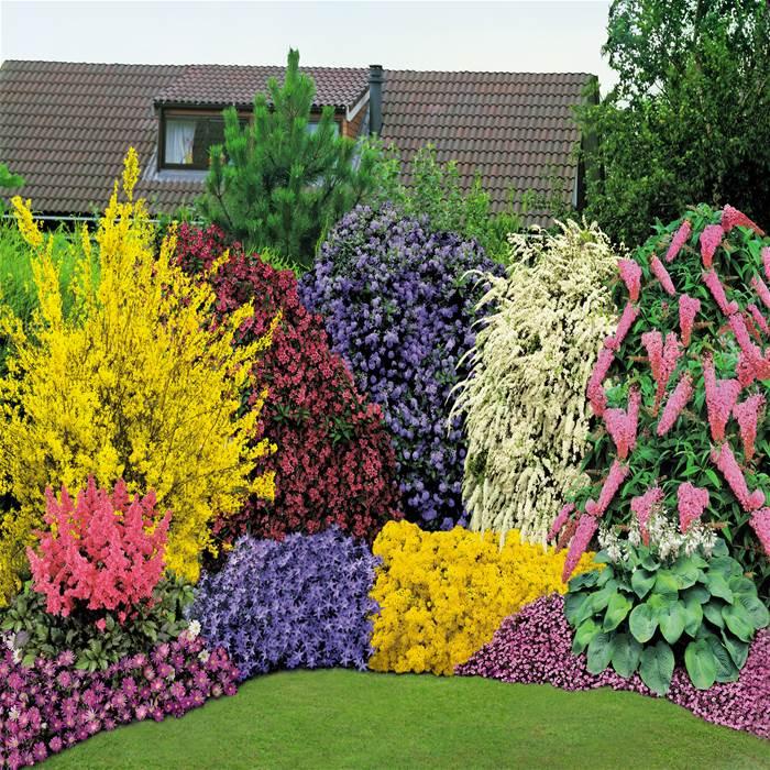 Схемы цветников и клумб на даче