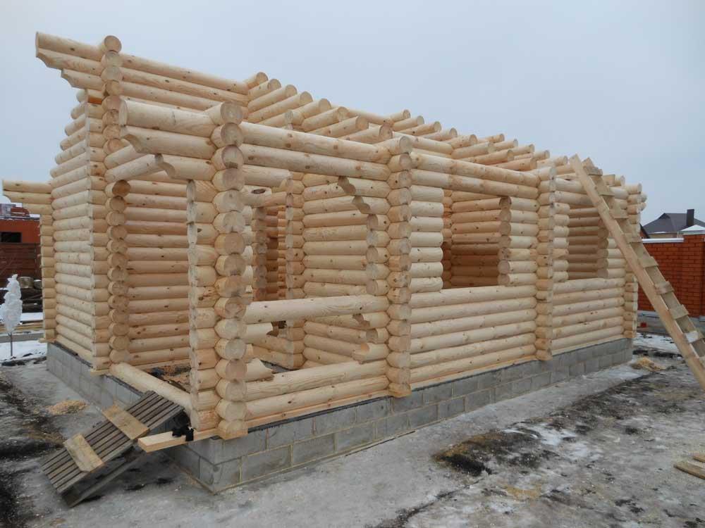 проект бревенчатого дома Изба 8,7x10,2 м