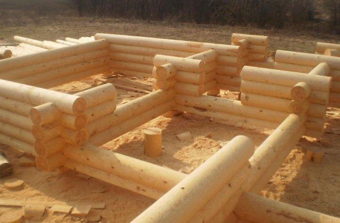 Древесина применяемая для рубки срубов